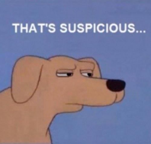 35950d62e1ea21c33c114e2b965298be_suspicious-dog-suspiciousdog-twitter-suspicious-dog-meme_500-478.jpeg
